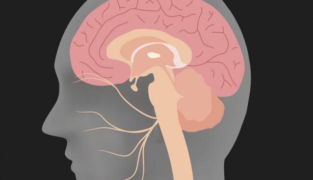 اسپاسم همیفاژ: علائم، علل و درمان