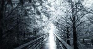 چه چیزی پس از مرگ وجود داره؟چطور ممکنه بدونیم؟