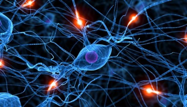 کشف سلول های عصبی جدید که می تواند بی خوابی درمان کند